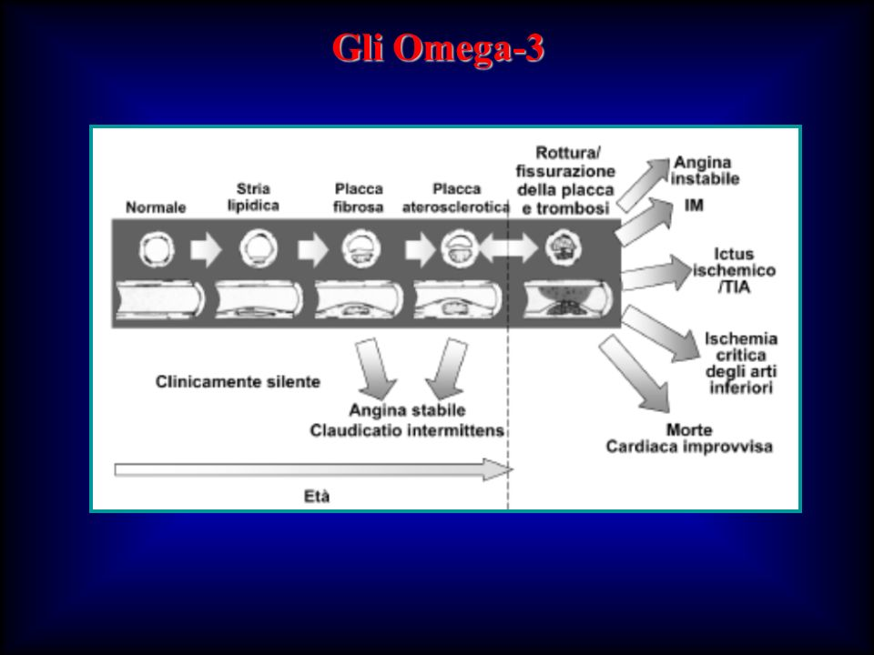 Gli Omega-3 82