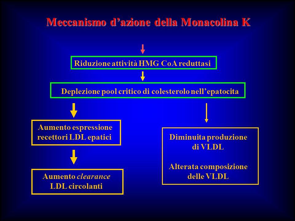 Meccanismo d'azione della Monacolina K