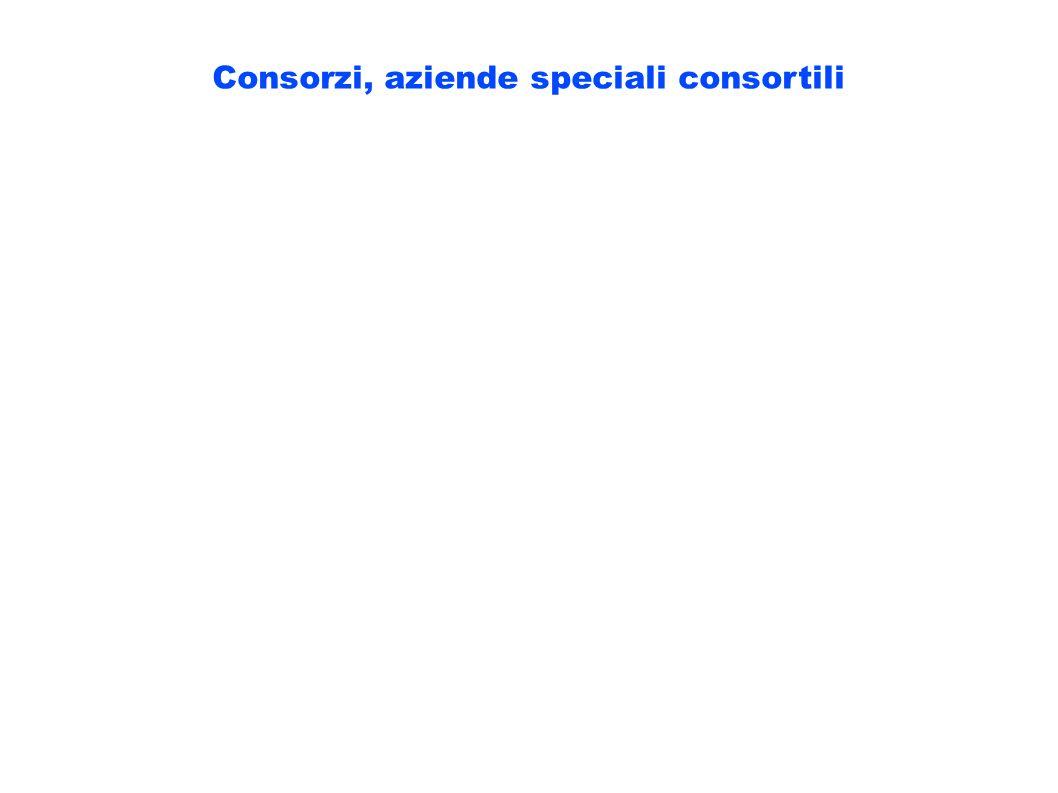Consorzi, aziende speciali consortili
