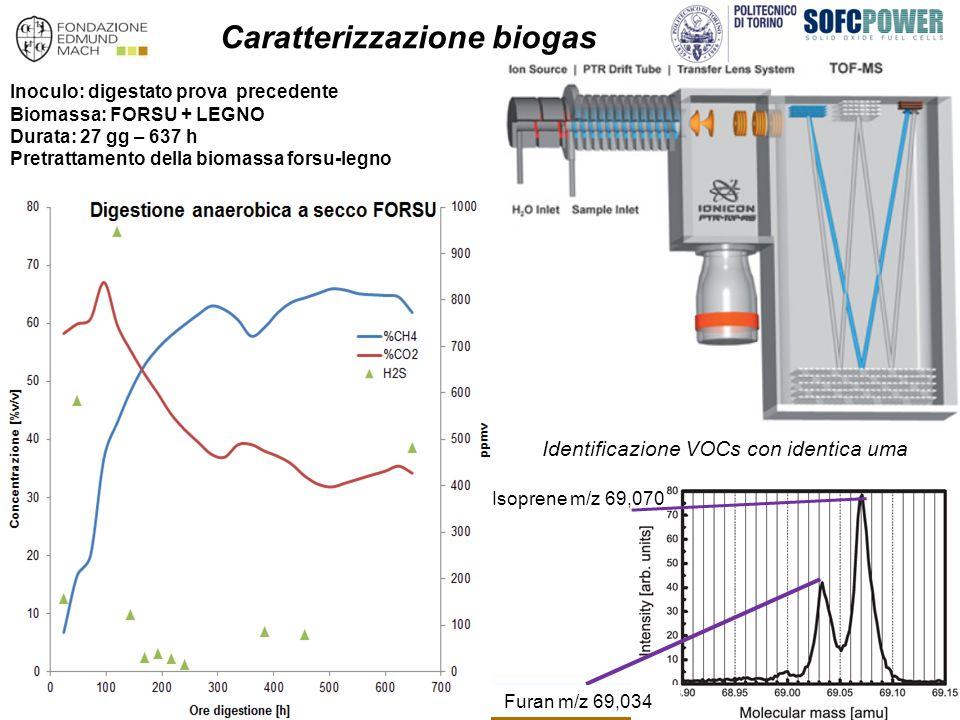 Caratterizzazione biogas