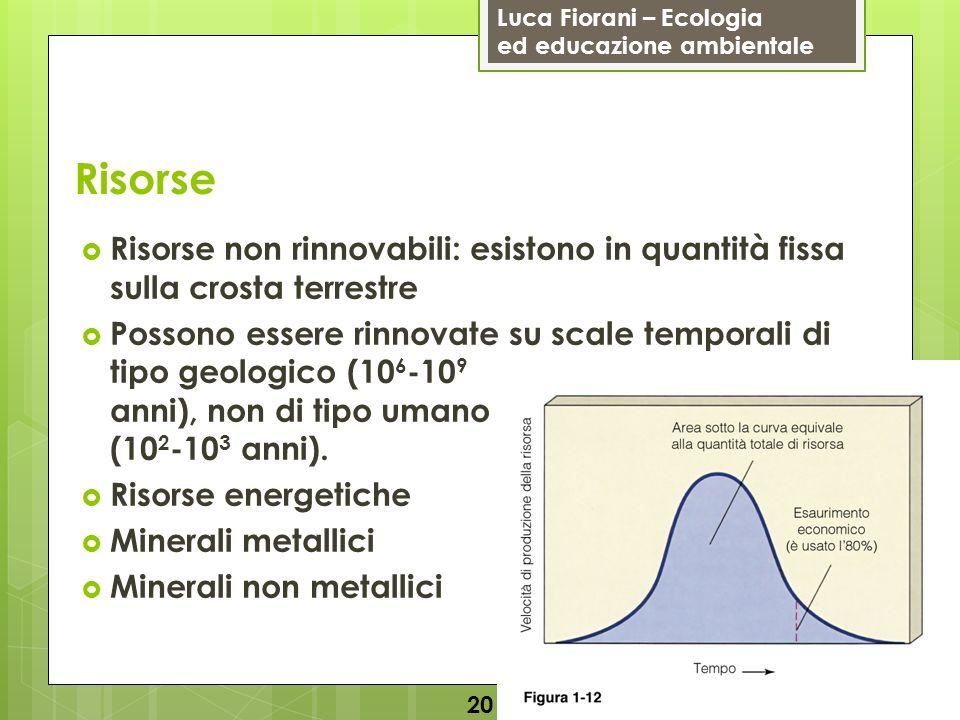 Risorse Risorse non rinnovabili: esistono in quantità fissa sulla crosta terrestre.