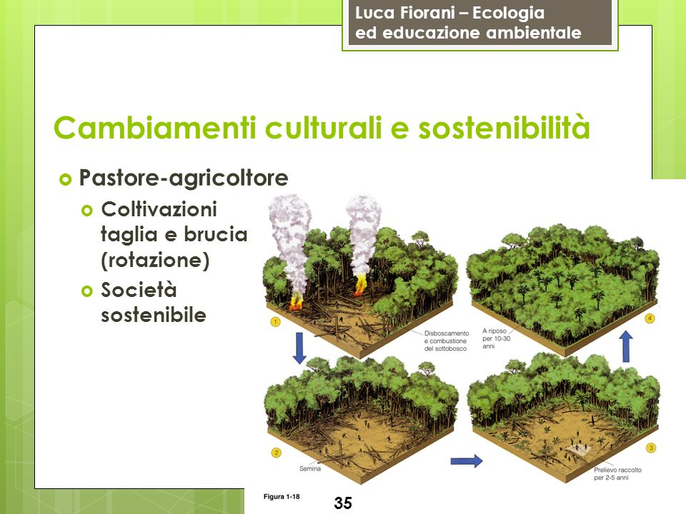 Cambiamenti culturali e sostenibilità