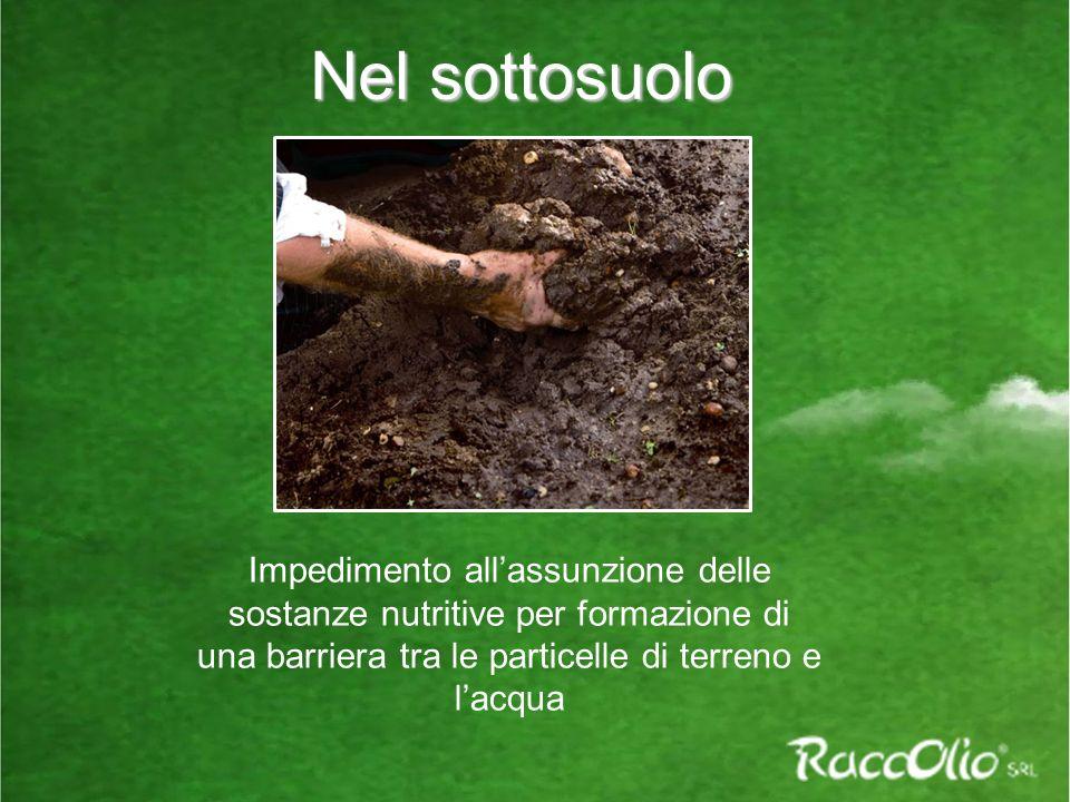Nel sottosuolo Impedimento all'assunzione delle sostanze nutritive per formazione di una barriera tra le particelle di terreno e l'acqua.