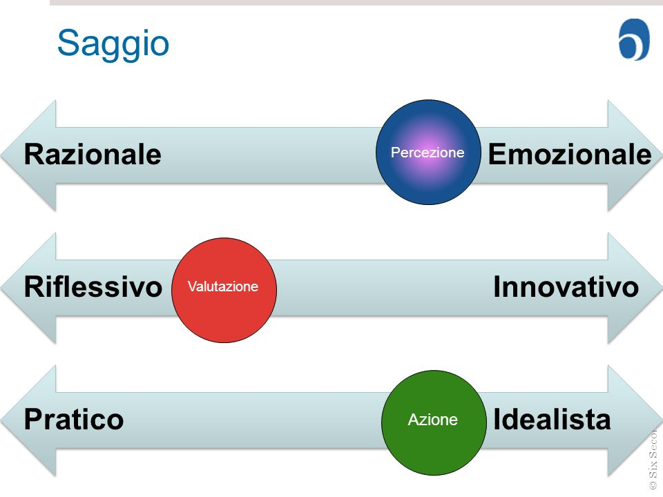 Saggio Razionale Emozionale Riflessivo Innovativo Pratico Idealista