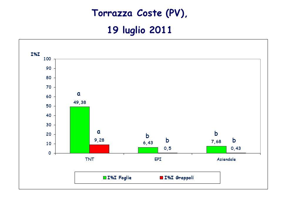 Torrazza Coste (PV), 19 luglio 2011