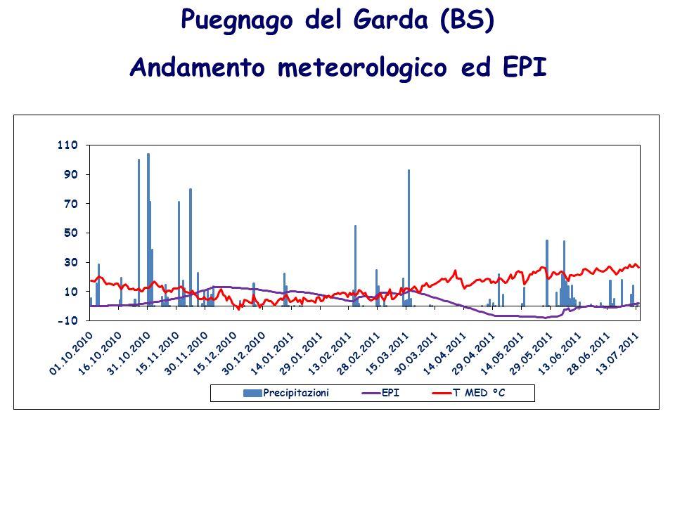 Puegnago del Garda (BS) Andamento meteorologico ed EPI