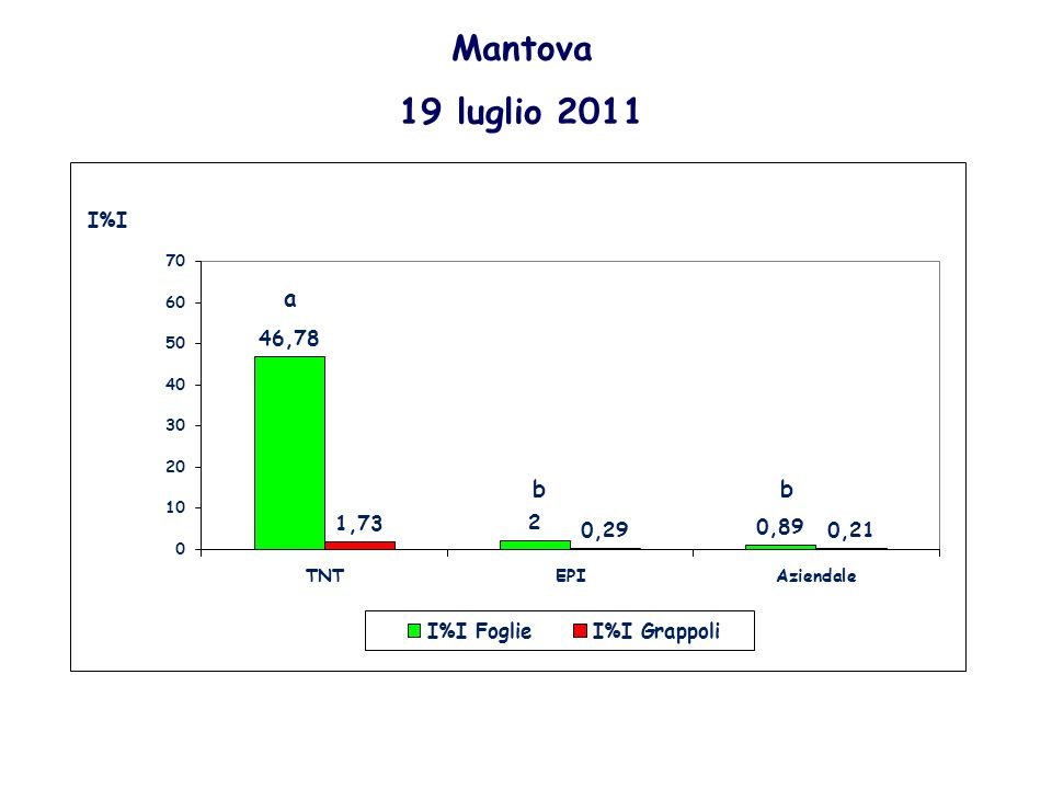 Mantova 19 luglio 2011 a b b