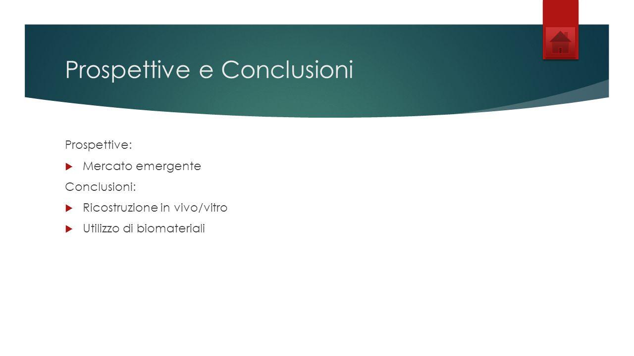 Prospettive e Conclusioni