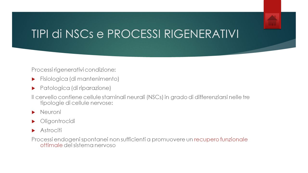 TIPI di NSCs e PROCESSI RIGENERATIVI