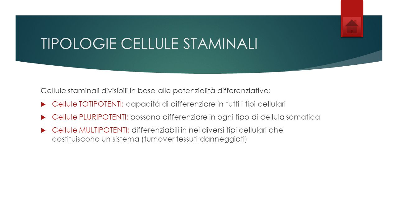 TIPOLOGIE CELLULE STAMINALI