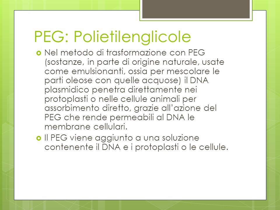 PEG: Polietilenglicole