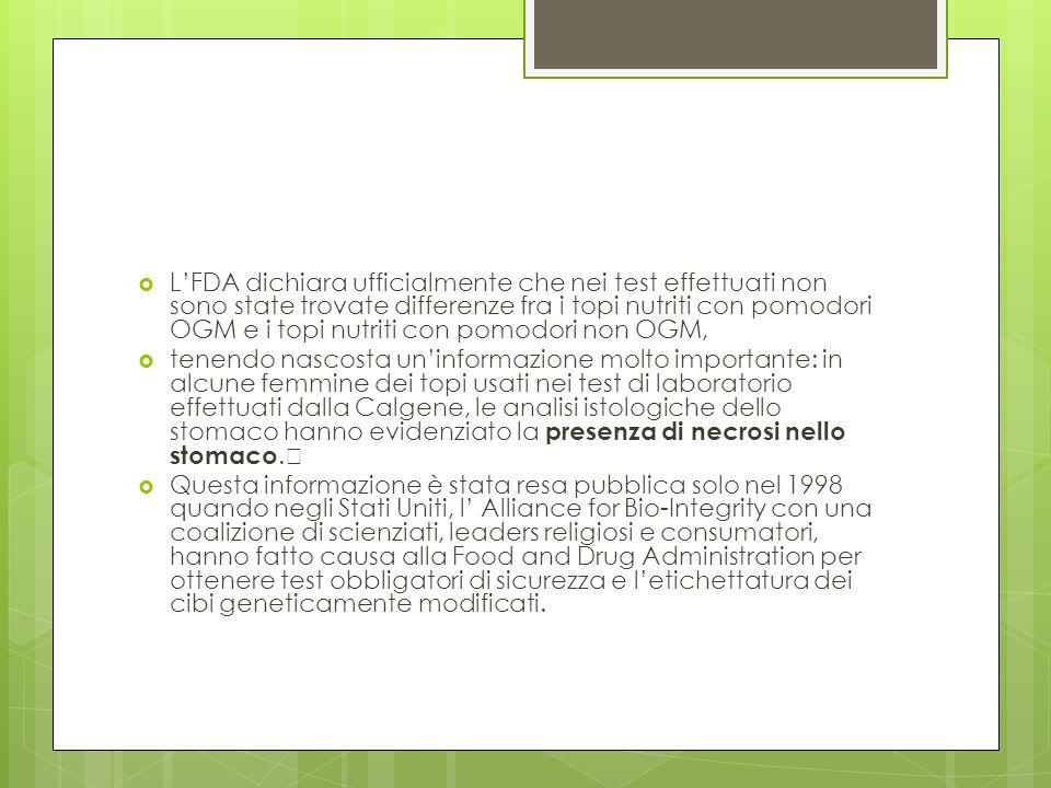 L'FDA dichiara ufficialmente che nei test effettuati non sono state trovate differenze fra i topi nutriti con pomodori OGM e i topi nutriti con pomodori non OGM,