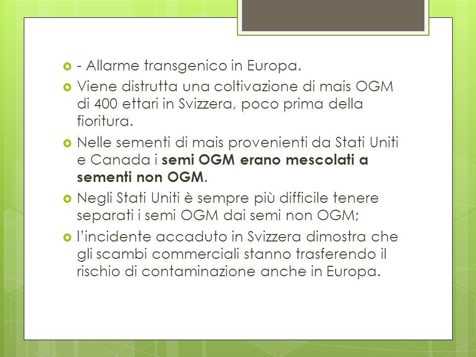 - Allarme transgenico in Europa.