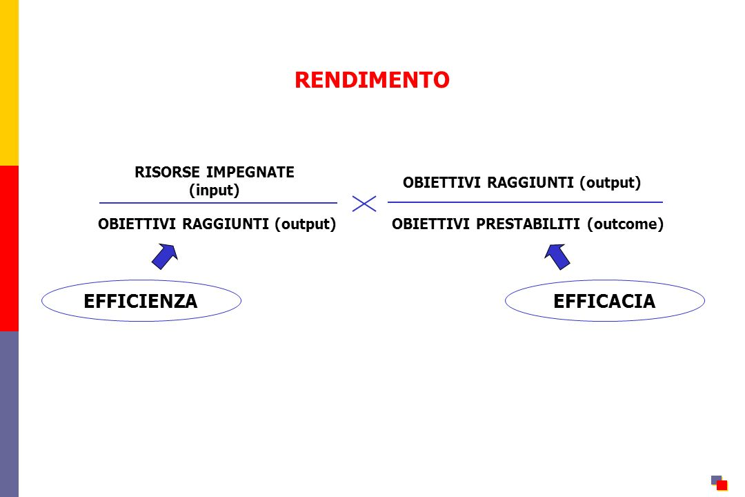 RENDIMENTO EFFICIENZA EFFICACIA RISORSE IMPEGNATE (input)