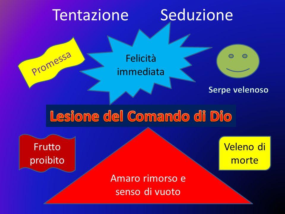Lesione del Comando di Dio