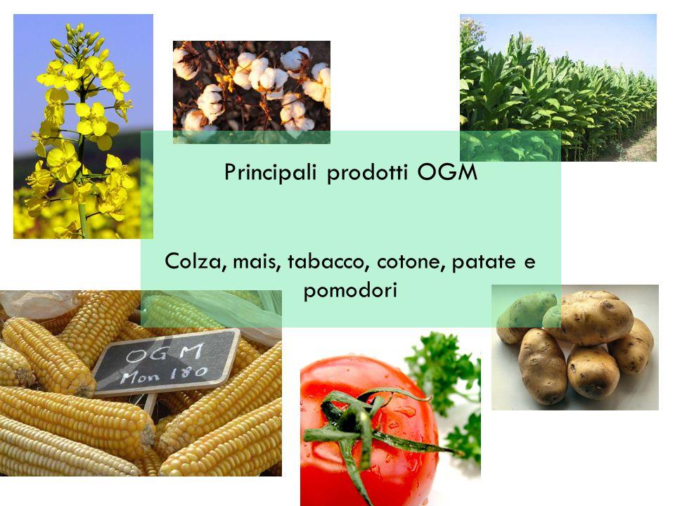 Principali prodotti OGM