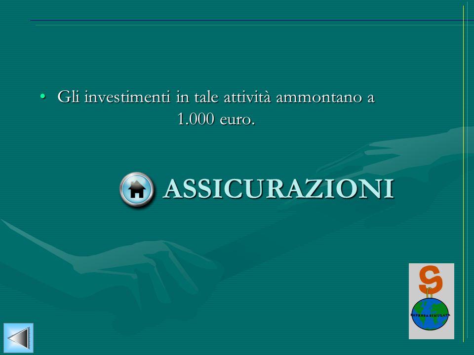 Gli investimenti in tale attività ammontano a 1.000 euro.