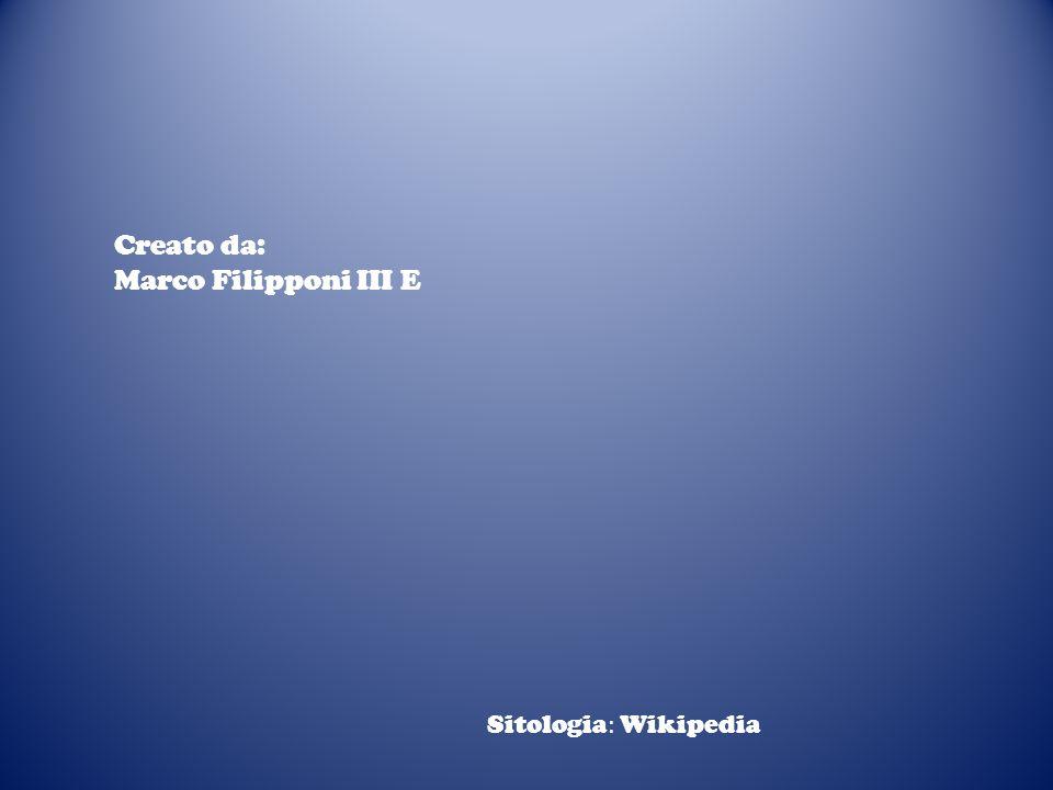 Creato da: Marco Filipponi III E Sitologia: Wikipedia
