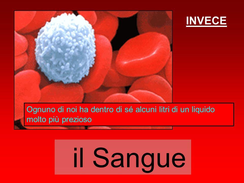 INVECE Ognuno di noi ha dentro di sé alcuni litri di un liquido molto più prezioso il Sangue
