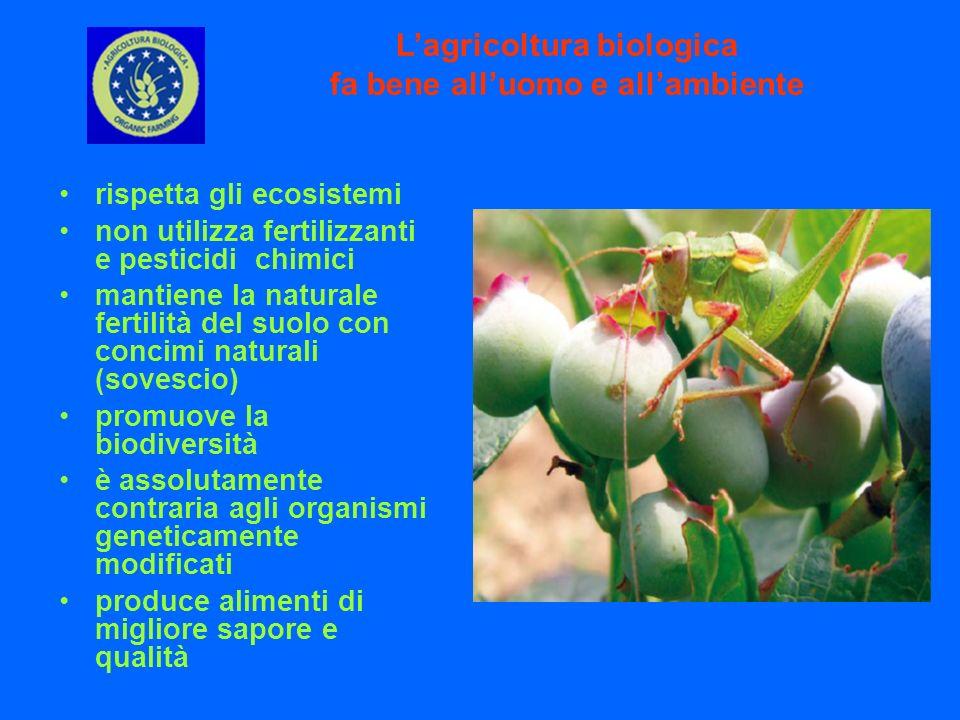 L'agricoltura biologica fa bene all'uomo e all'ambiente