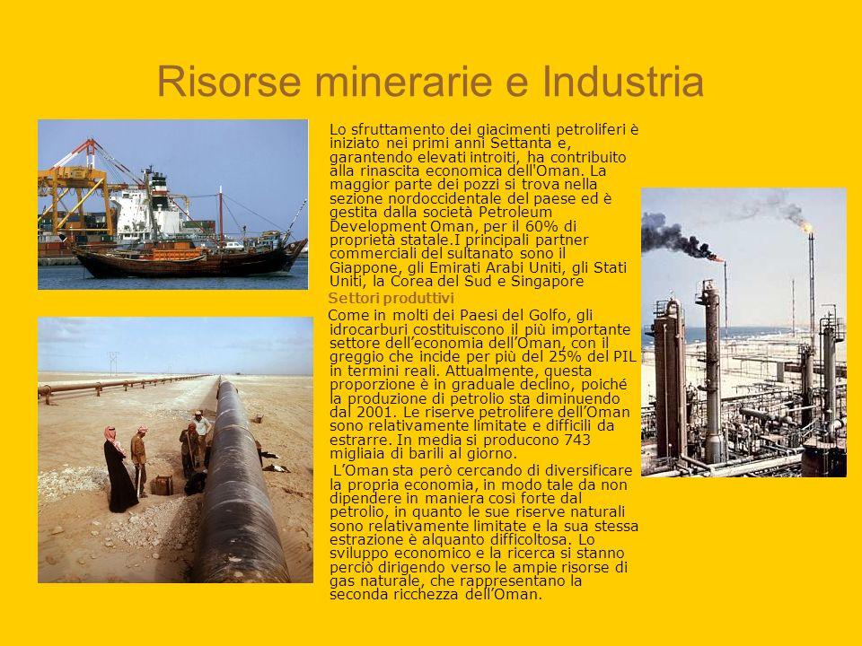 Risorse minerarie e Industria