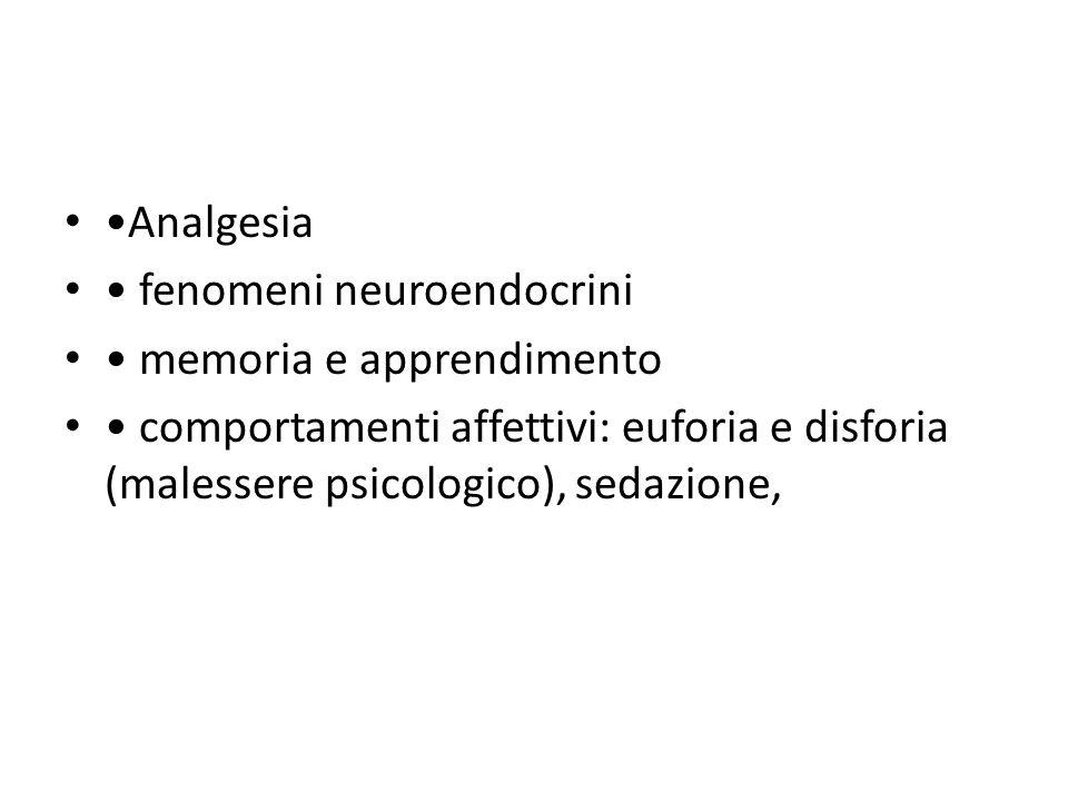 •Analgesia • fenomeni neuroendocrini. • memoria e apprendimento.