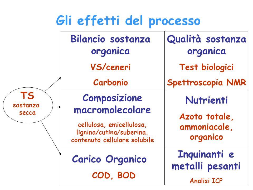 Gli effetti del processo