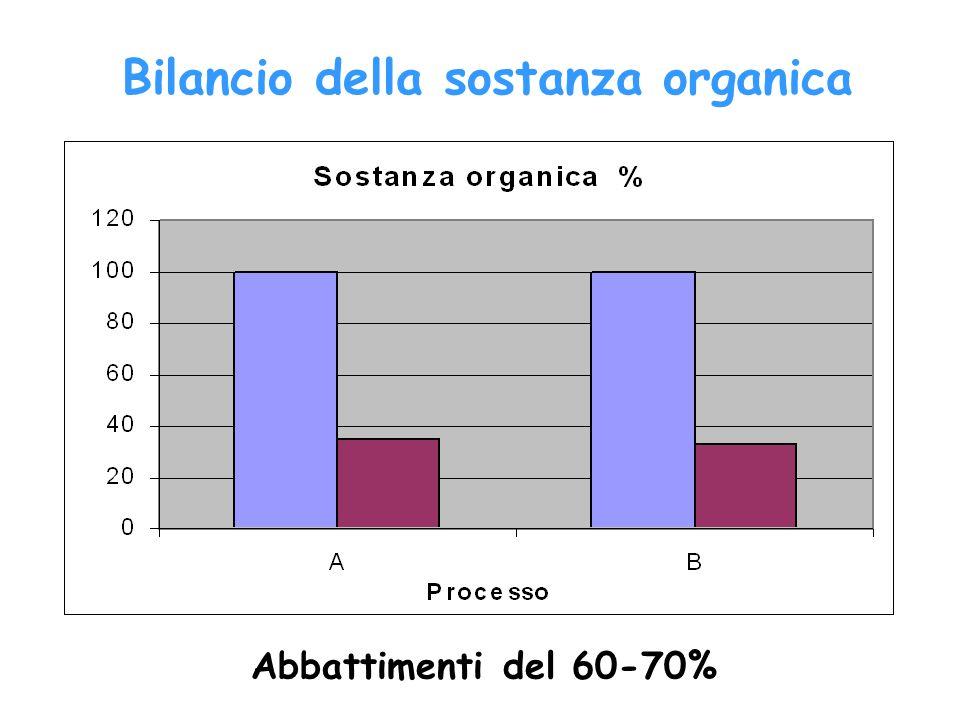Bilancio della sostanza organica
