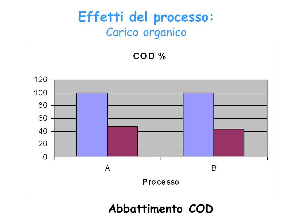 Effetti del processo: Carico organico Abbattimento COD