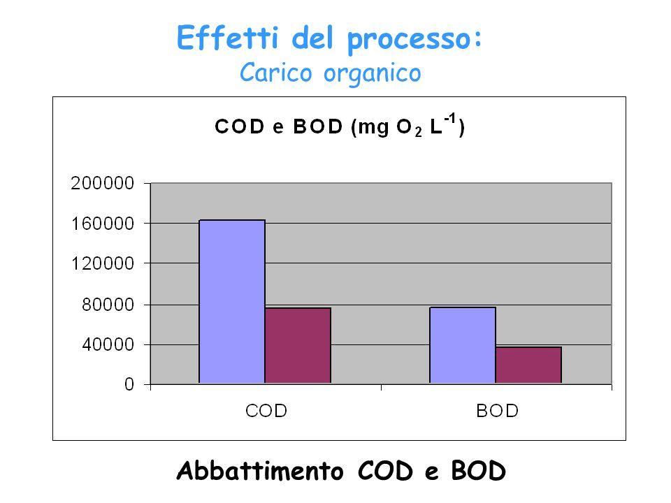 Effetti del processo: Carico organico Abbattimento COD e BOD