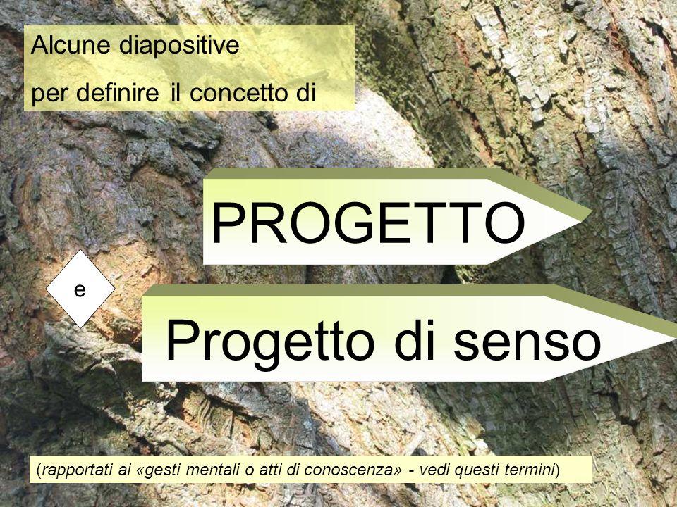 PROGETTO Progetto di senso Alcune diapositive