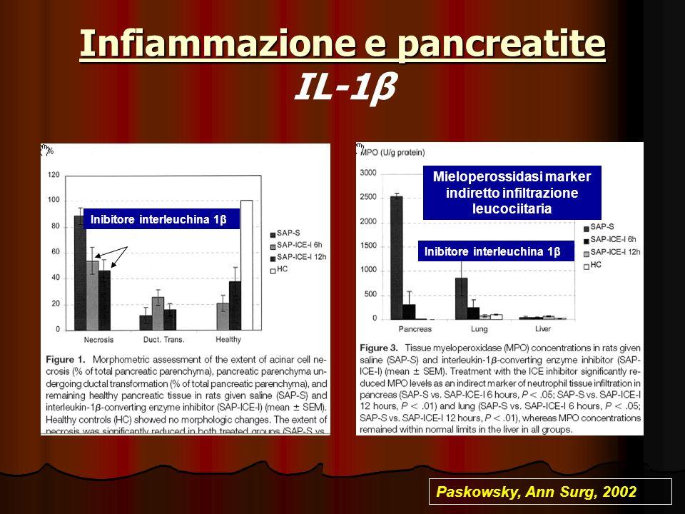 Infiammazione e pancreatite IL-1β