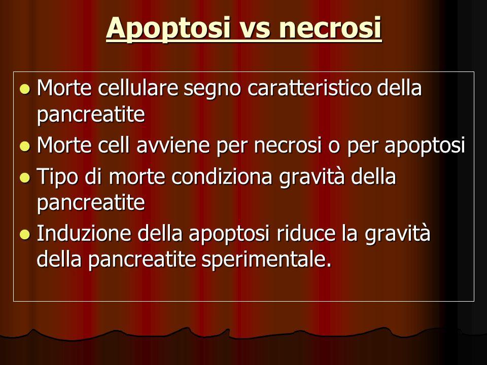 Apoptosi vs necrosiMorte cellulare segno caratteristico della pancreatite. Morte cell avviene per necrosi o per apoptosi.
