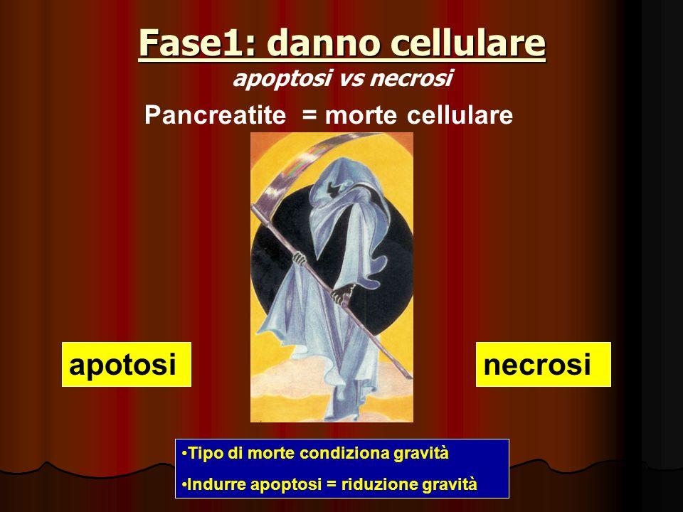 Fase1: danno cellulare apoptosi vs necrosi
