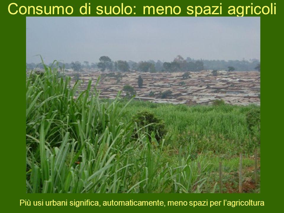Consumo di suolo: meno spazi agricoli