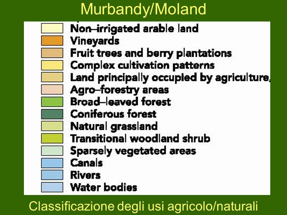 Classificazione degli usi agricolo/naturali