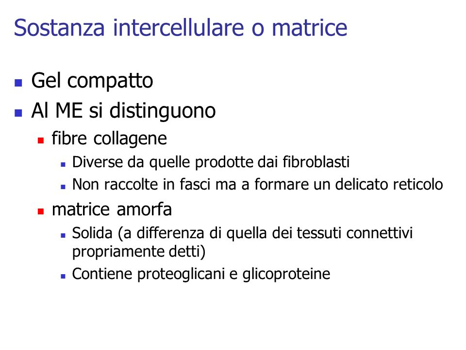 Sostanza intercellulare o matrice