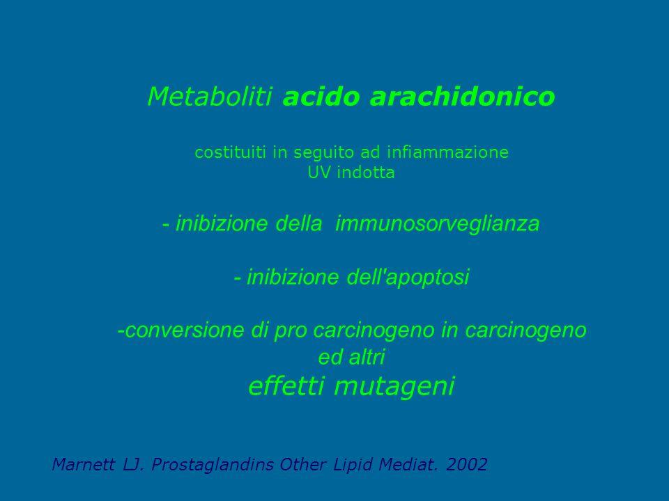 Metaboliti acido arachidonico costituiti in seguito ad infiammazione UV indotta - inibizione della immunosorveglianza - inibizione dell apoptosi -conversione di pro carcinogeno in carcinogeno ed altri effetti mutageni