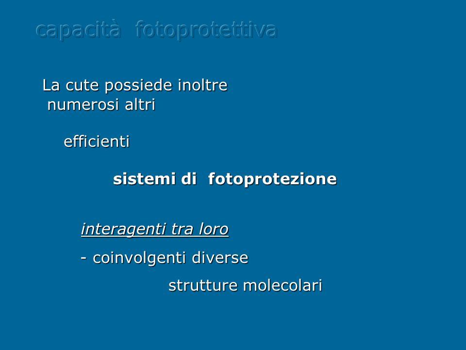 capacità fotoprotettiva