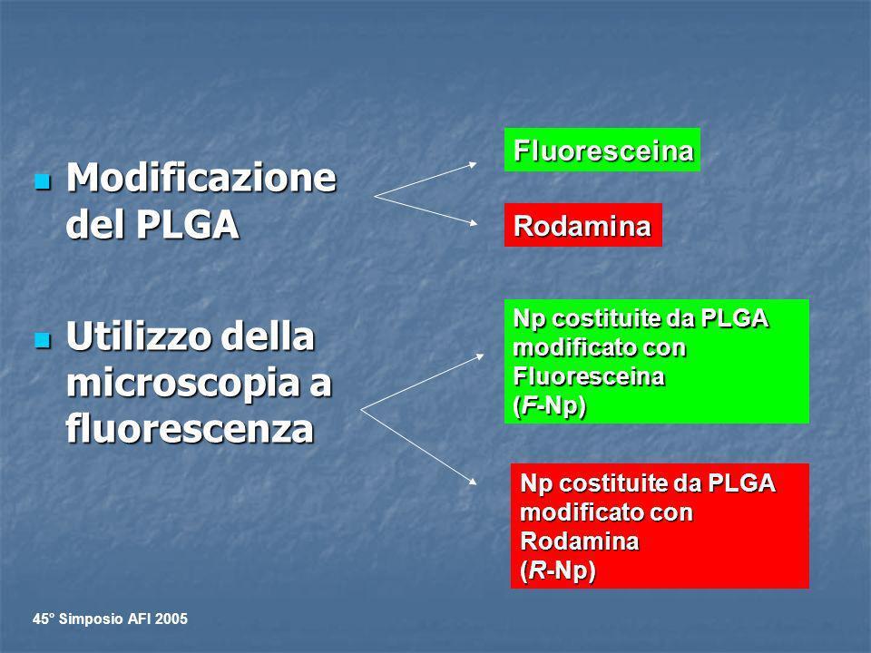 Modificazione del PLGA