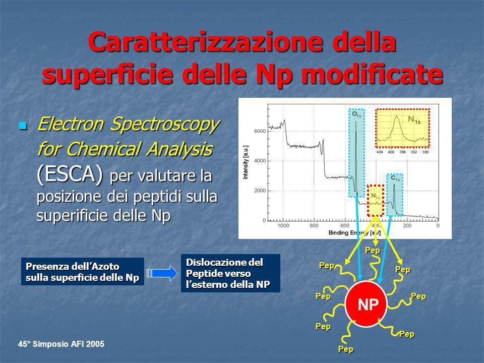 Caratterizzazione della superficie delle Np modificate