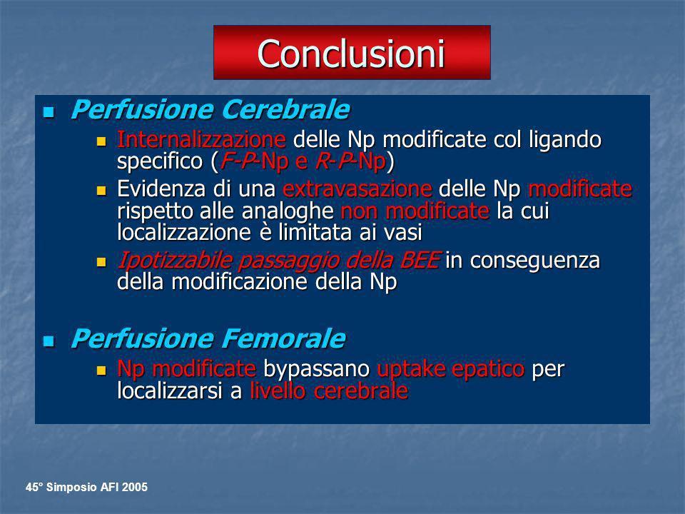 Conclusioni Perfusione Cerebrale Perfusione Femorale