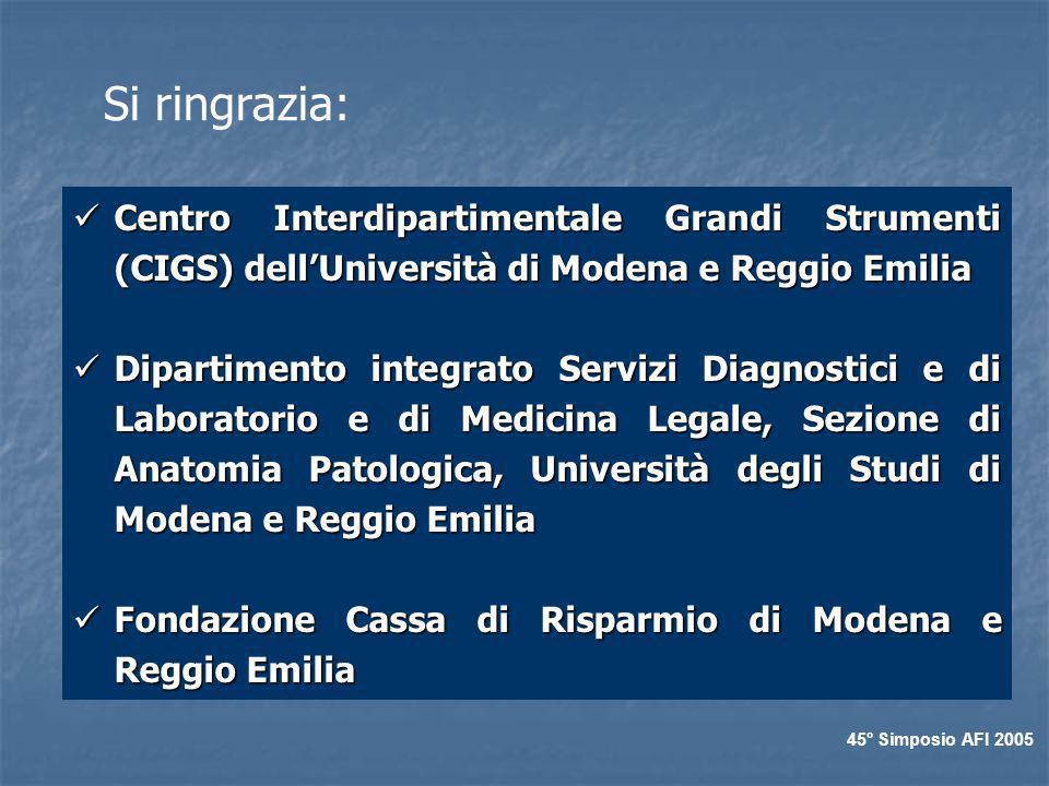 Si ringrazia: Centro Interdipartimentale Grandi Strumenti (CIGS) dell'Università di Modena e Reggio Emilia.