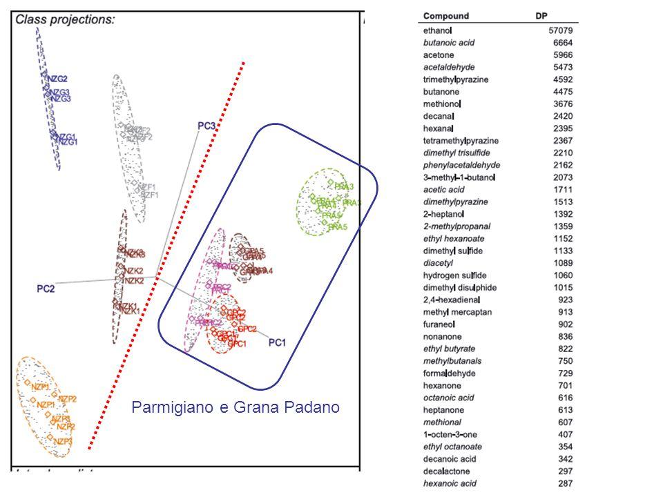 Parmigiano e Grana Padano