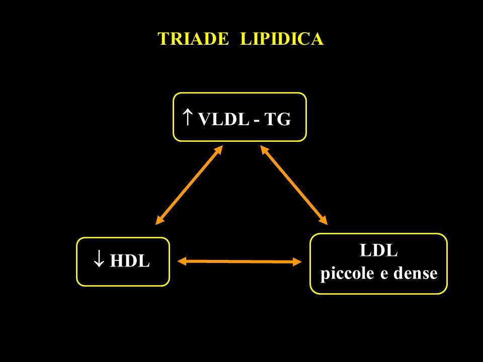 TRIADE LIPIDICA  VLDL - TG LDL piccole e dense  HDL