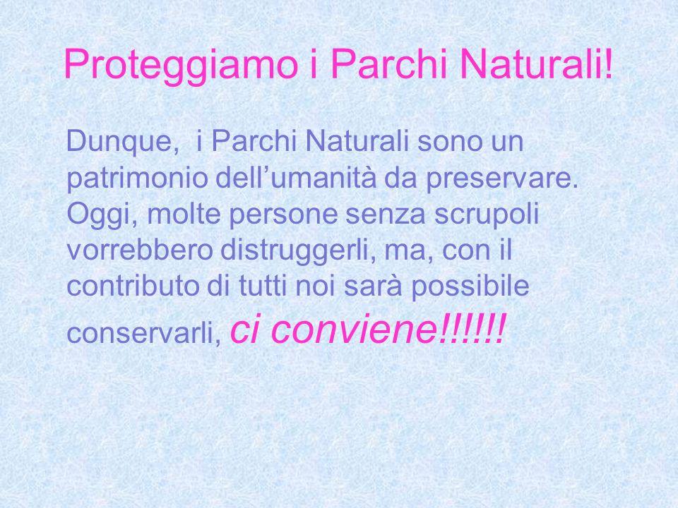 Proteggiamo i Parchi Naturali!