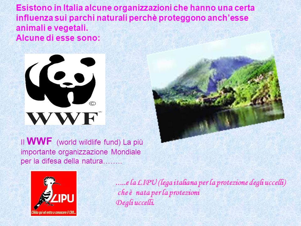 .....e la LIPU (lega italiana per la protezione degli uccelli)