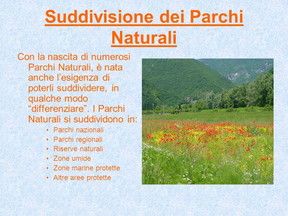 Suddivisione dei Parchi Naturali