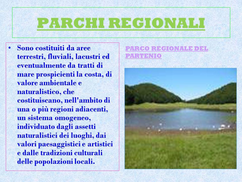 PARCHI REGIONALI