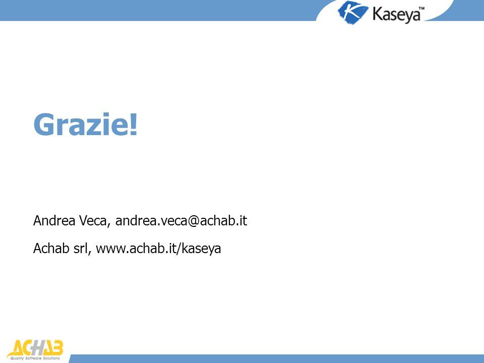 Grazie! Andrea Veca, andrea.veca@achab.it